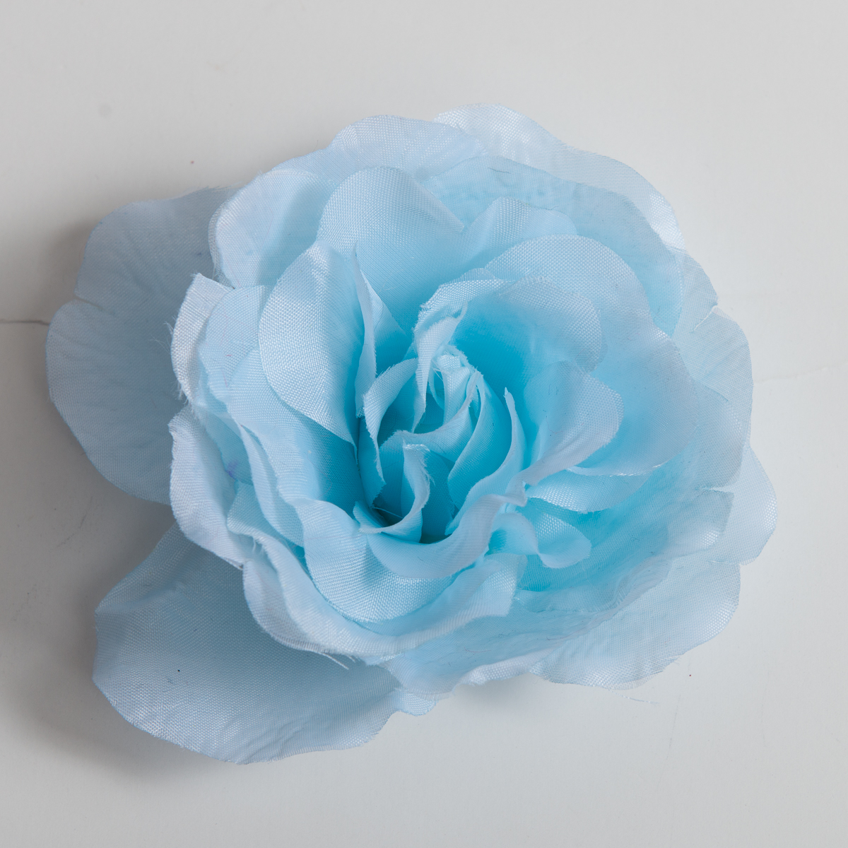 ice blue rose flower heads