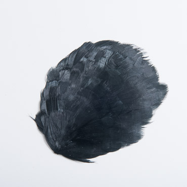 Solid Black Guinea Plumage Feather Pads