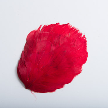 Solid Red Guinea Plumage Feather Pads